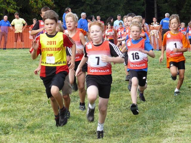 15. Westerzgebirgscup im Crosslauf am 10.09.2011